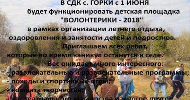 «Волонтерики-2018» сдк с. Горки